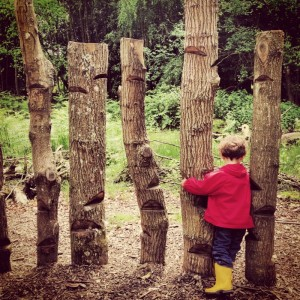 logs etched with steps and little boy