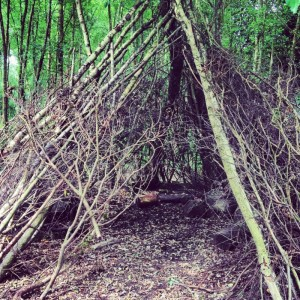 a den in a wood made of sticks