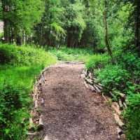 Natural Play: Ringwood Toll, Sheffield Park and Garden