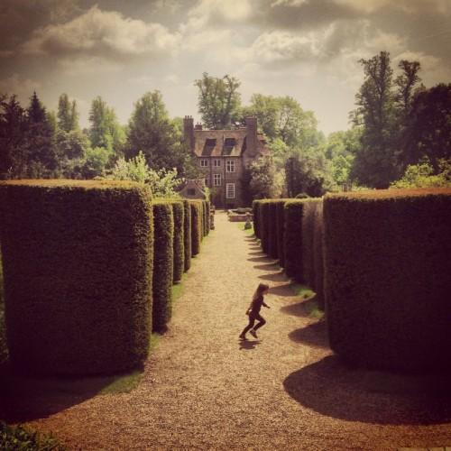 running-between-box-hedges-at-groombridge