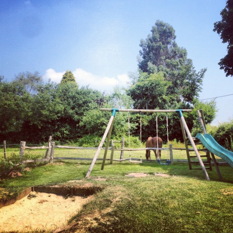 a-playground-with-horses-in-the-background