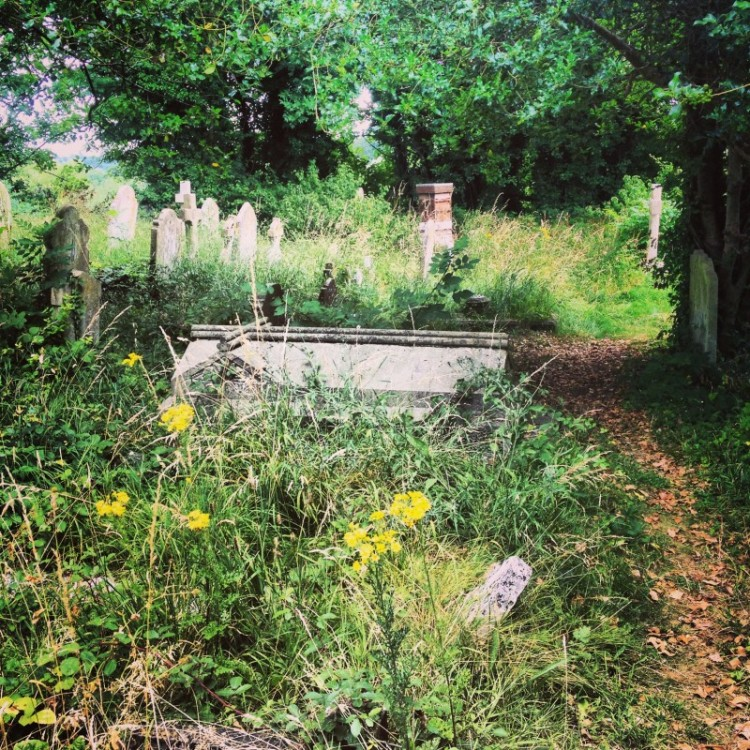 old-english-graveyard-with-beehives