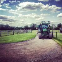 Play Farms: Washbrooks Family Farm