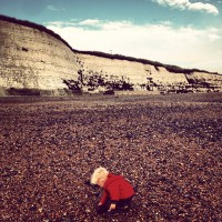Rolling Along and Rockpools at Rottingdean