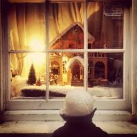 Christmas Window Wonderlands in Lewes