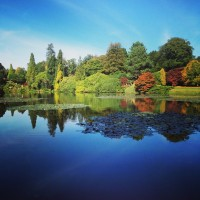 Meetings with Remarkable Trees: Sheffield Park and Garden, East Sussex